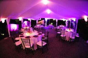 Tented Wedding Reception, Private Villa, Dominical Costa Rica