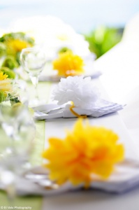 Read more about the article How to personalize your Destination Wedding